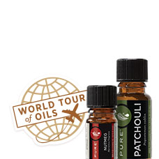 World Tour Oils