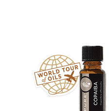 World Tour Oil