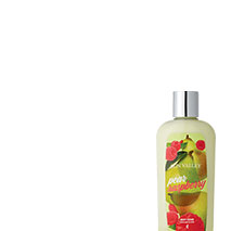 Sun Valley Pear Raspberry Body Lotion. Limited time only. Save 50%.